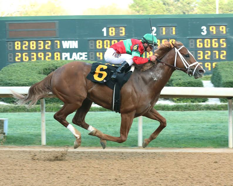 Malagacy rolls away in Rebel G2 March 18 to stamp Derby ticket in first route and stakes race