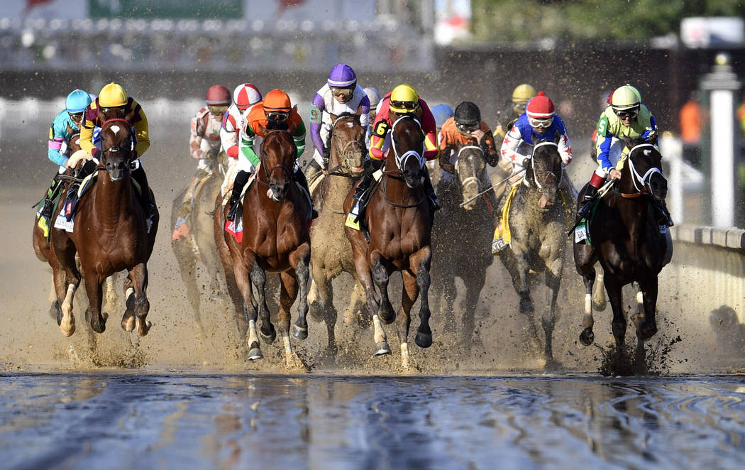 Always Dreaming, Lookin at Lee, and Classic Empire all ranked highly in ALL PRE-DERBY HRBW analyses.